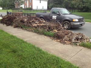Tree limb removal Matthews, Yard waste removal