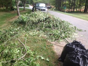 Yard Waste Removal, Tree Limb Removal Weddington